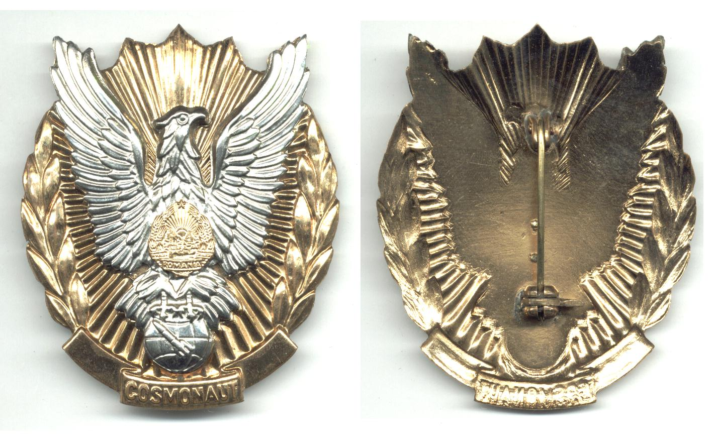 astronaut wings insignia - photo #49